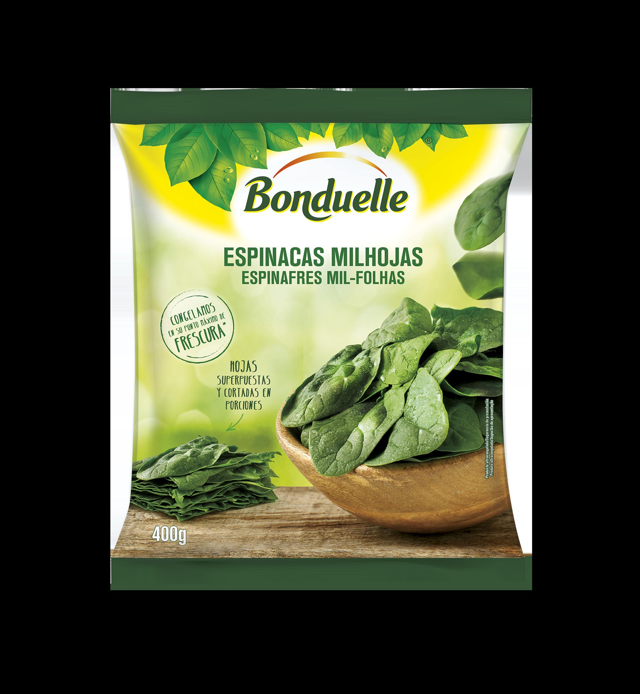 espinafres-mil-folhas